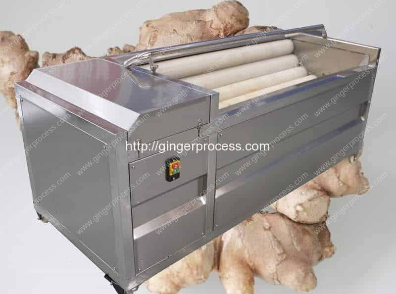 Automatic-Brush-Type-Ginger-Washing-Peeling-Machine-Manufacture