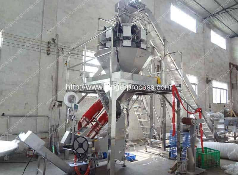 Full-Automatic-Ginger-Mesh-Bag-Clipping-Machine