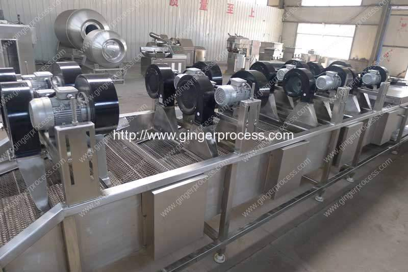 Automatic-Feeding-Mesh-with-Turn-Over-Function-for-Dryer-Machine