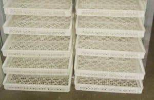 Natural-Gas-Fired-Dryer-Oven-Plastic-Plate