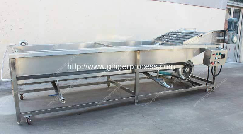 Air-Bubble-Type-Ginger-Water-Washing-Machine-Manufacture-for-Sale