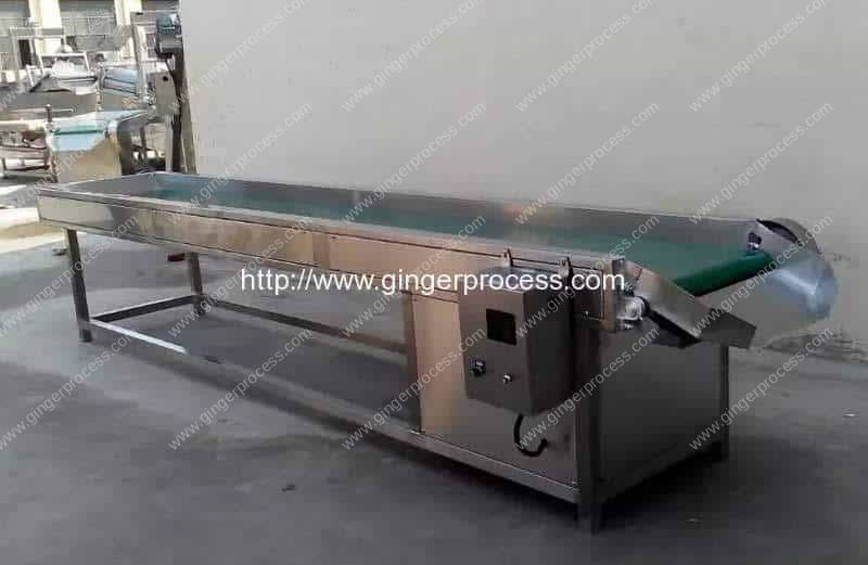 Ginger-Quality-Selecting-Conveyor