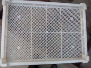 Garlic-Dryer-Oven-Material-Tray-Plate