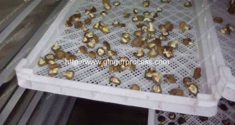 Natural-Gas-Fired-Batch-Type-Ginger-Slice-Dryer-Oven