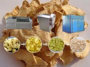 Linha de produção de fatia de gengibre desidratado semi-automática para venda
