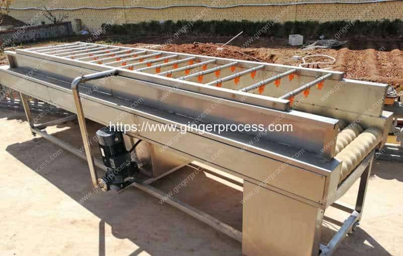 Automatic-Ginger-Washing-Impurity-Removing-Machine