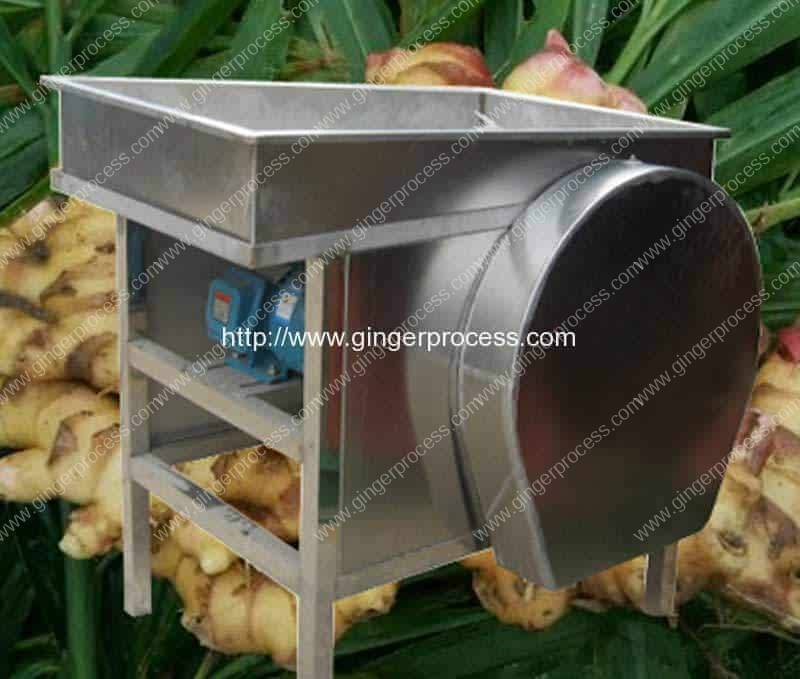 1000kgh-Ginger-Slice-Ginger-Strip-Cutting-Machine-for-Sale