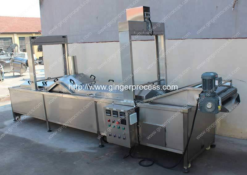 Automatic-Hot-Water-Blanching-Machine-for-Turmeric