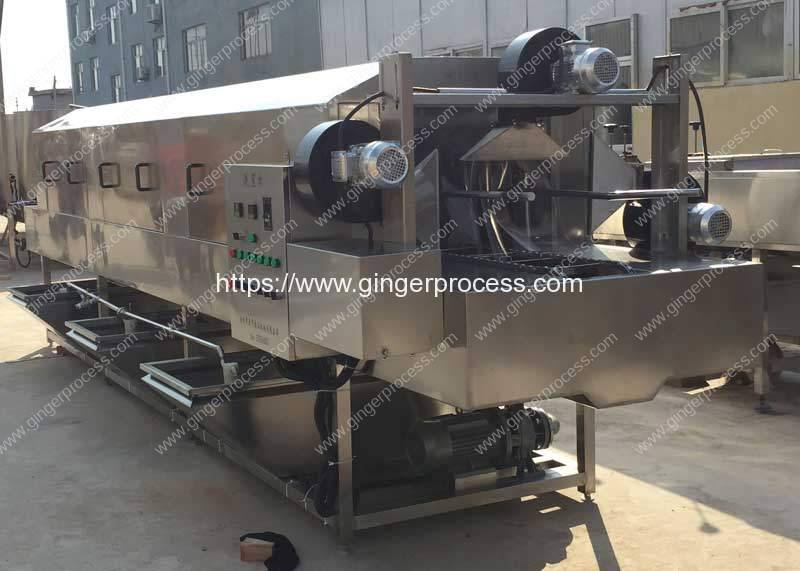 High-Pressure-Water-Ginger-Washing-Machine-for-Supermarket-Ginger
