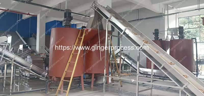 Large-Capacity-Tumble-Drum-Type-Ginger-Washing-Peeling-Machine