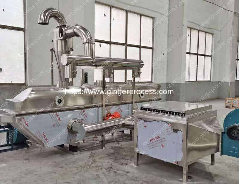 Fluid-Bed-Electric-Heating-Ginger-Tea-Granule-Vibrate-Dryer