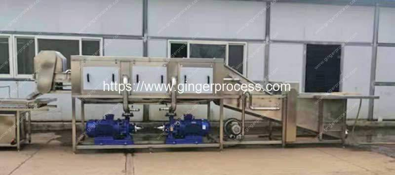 Integrated-Type-Ginger-Water-Washing-Cleaning-Machine-Delivery