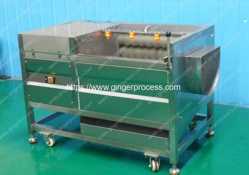 Canada-Ginger-Washing-Peeling-Machine