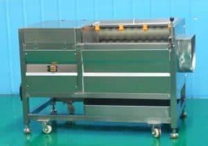 P800-Ginger-Washing-Peeling-Machine