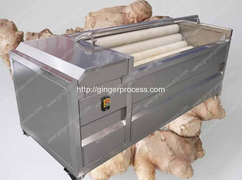 Automatic-Brush-Type-Ginger-Washing-Peeling-Machine-Manufacture