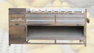 Screw-Feeding-Type-Ginger-Washing-Peeling-Machine