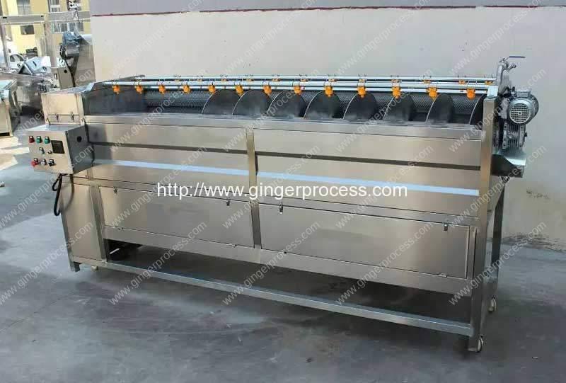 Screw-Moving-Type-Ginger-Washing-and-Peeling-Machine