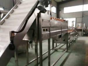 Large-Capacity-Design-for-Ginger-Washing-Peeling-Machine