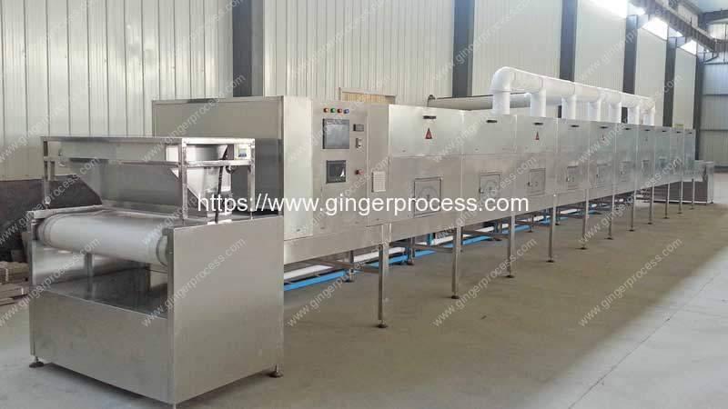 Automatic-Ginger-Microwave-Sterilizer-Machine