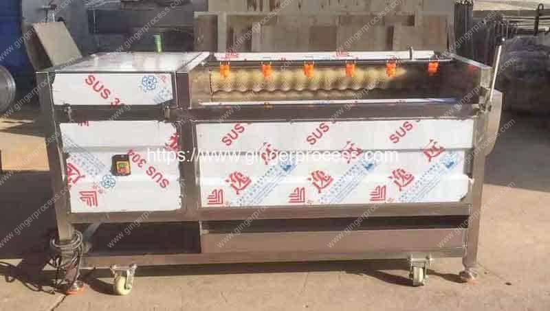 P1200-Ginger-Washing-Peeling-Machine-Delivery